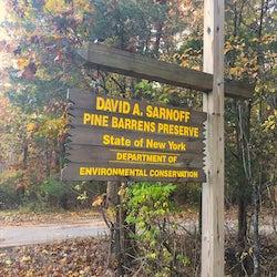 David A. Sarnoff Pine Barrens Preserve