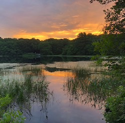 Round Pond - Long Pond Greenbelt