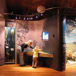 South Fork Natural History Museum & Nature Center