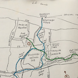 Brookhaven Trail