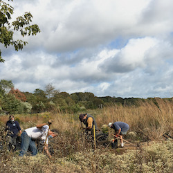 Vineyard Field - Long Pond Greenbelt